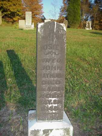 MAYHUGH, JOSIE - Meigs County, Ohio   JOSIE MAYHUGH - Ohio Gravestone Photos