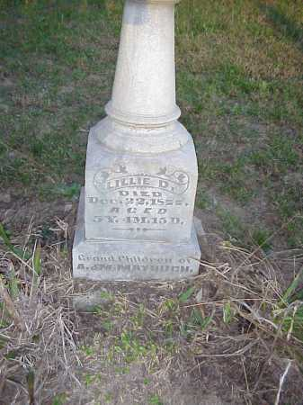 MAYHUGH, LILLIE D. - Meigs County, Ohio | LILLIE D. MAYHUGH - Ohio Gravestone Photos