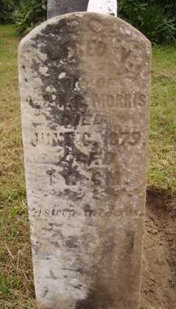 MORRIS, ALFRED VICTOR - Meigs County, Ohio   ALFRED VICTOR MORRIS - Ohio Gravestone Photos