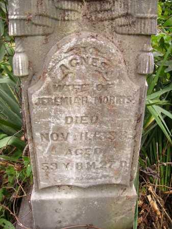 MORRIS, AGNES - Meigs County, Ohio | AGNES MORRIS - Ohio Gravestone Photos