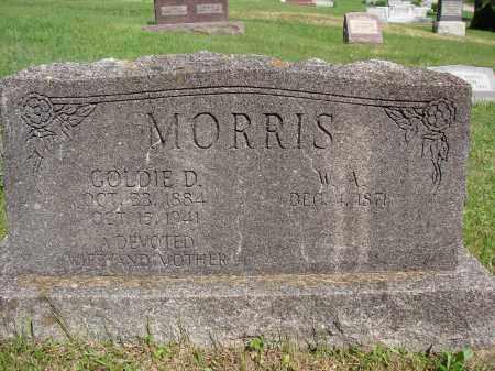 MORRIS, GOLDIE D - Meigs County, Ohio | GOLDIE D MORRIS - Ohio Gravestone Photos