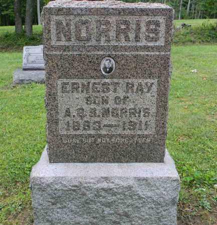 NORRIS, ERNEST RAY - Meigs County, Ohio   ERNEST RAY NORRIS - Ohio Gravestone Photos