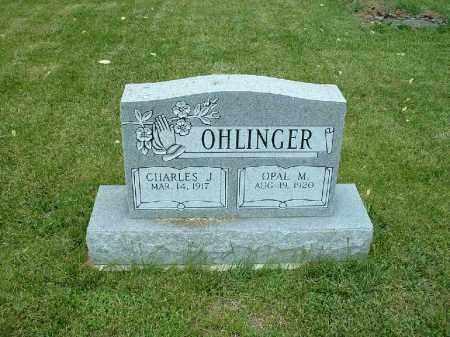 OHLINGER, CHARLES J. - Meigs County, Ohio | CHARLES J. OHLINGER - Ohio Gravestone Photos
