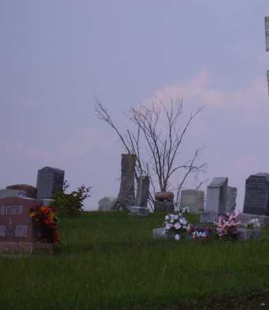CASTLE RAWLINGS, FLORINDA - Meigs County, Ohio | FLORINDA CASTLE RAWLINGS - Ohio Gravestone Photos