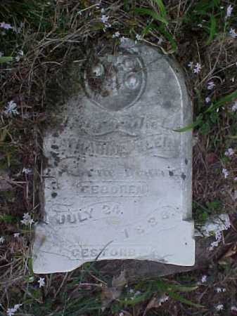 REUTHER, CATHERINE - Meigs County, Ohio | CATHERINE REUTHER - Ohio Gravestone Photos
