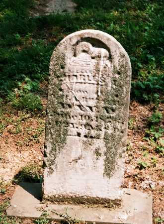 RUSSELL, CHARLES L. - Meigs County, Ohio   CHARLES L. RUSSELL - Ohio Gravestone Photos