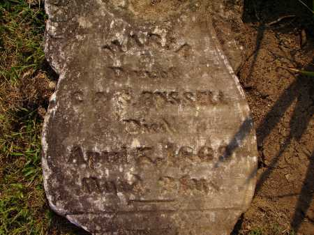 RUSSELL, MARIA - Meigs County, Ohio   MARIA RUSSELL - Ohio Gravestone Photos