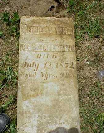 RUTHERFORD, MERRILL NEWTON - Meigs County, Ohio | MERRILL NEWTON RUTHERFORD - Ohio Gravestone Photos