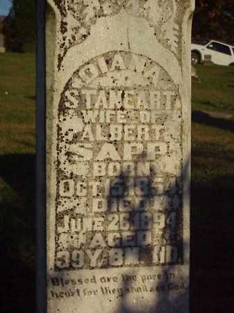 STANEART SAPP, DIANA - Meigs County, Ohio | DIANA STANEART SAPP - Ohio Gravestone Photos