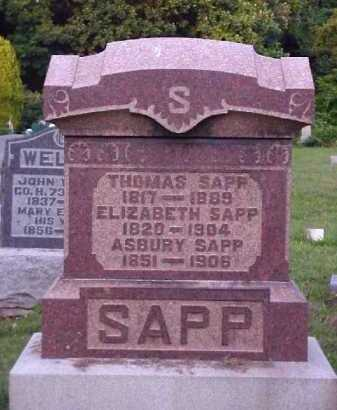 SAPP, THOMAS - Meigs County, Ohio | THOMAS SAPP - Ohio Gravestone Photos