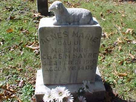 SAYRE, AGNES MARIE - Meigs County, Ohio   AGNES MARIE SAYRE - Ohio Gravestone Photos