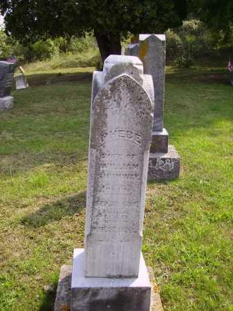 BLIZZARD SHUMWAY, PHEBE - Meigs County, Ohio | PHEBE BLIZZARD SHUMWAY - Ohio Gravestone Photos