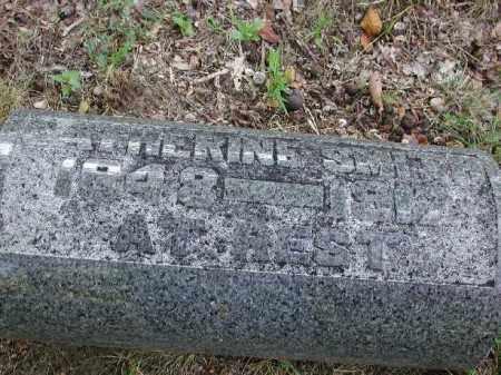 SMITH, CATHERINE - Meigs County, Ohio | CATHERINE SMITH - Ohio Gravestone Photos