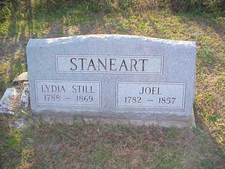 STANEART, LYDIA - Meigs County, Ohio | LYDIA STANEART - Ohio Gravestone Photos