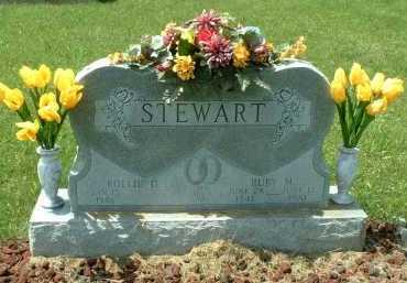 STEWART, ROLLIE D. - Meigs County, Ohio | ROLLIE D. STEWART - Ohio Gravestone Photos