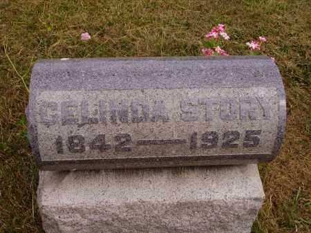 BRADFORD STORY, CELINDA - Meigs County, Ohio | CELINDA BRADFORD STORY - Ohio Gravestone Photos