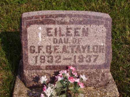 TAYLOR, EILEEN - Meigs County, Ohio | EILEEN TAYLOR - Ohio Gravestone Photos