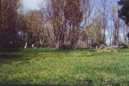 AUSTIN CEMETERY, VIEW 3 - Meigs County, Ohio | VIEW 3 AUSTIN CEMETERY - Ohio Gravestone Photos