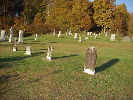 WHITE OAK, CEMETERY - Meigs County, Ohio | CEMETERY WHITE OAK - Ohio Gravestone Photos