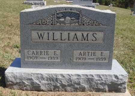 WILLIAMS, CARRIE E. - Meigs County, Ohio | CARRIE E. WILLIAMS - Ohio Gravestone Photos