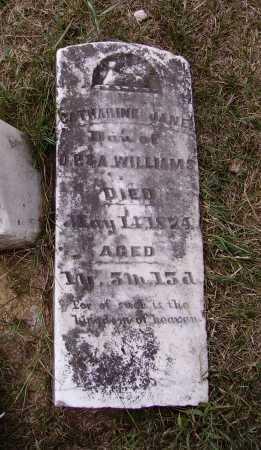 WILLIAMS, CATHERINE JANE - Meigs County, Ohio | CATHERINE JANE WILLIAMS - Ohio Gravestone Photos