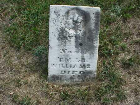 WILLIAMS, DAVID M. - Meigs County, Ohio | DAVID M. WILLIAMS - Ohio Gravestone Photos