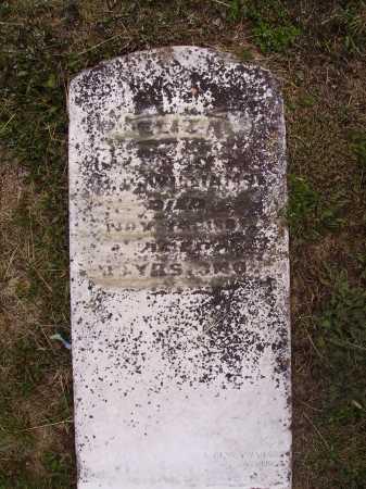 WILLIAMS, ELIZA - Meigs County, Ohio | ELIZA WILLIAMS - Ohio Gravestone Photos
