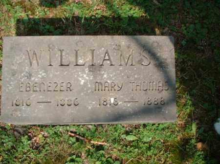 WILLIAMS, MARY - Meigs County, Ohio | MARY WILLIAMS - Ohio Gravestone Photos