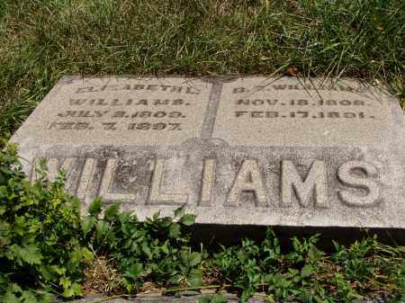 WILLIAMS, ELIZABETH L. - Meigs County, Ohio | ELIZABETH L. WILLIAMS - Ohio Gravestone Photos