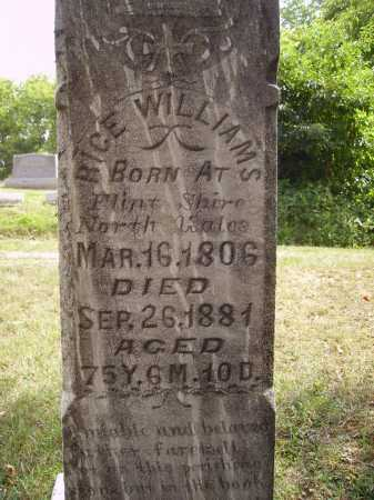 WILLIAMS, RICE - CLOSEVIEW - Meigs County, Ohio | RICE - CLOSEVIEW WILLIAMS - Ohio Gravestone Photos