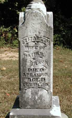 WILSON, ELIZABETH - Meigs County, Ohio | ELIZABETH WILSON - Ohio Gravestone Photos