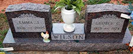 WILSON, EMMA - Meigs County, Ohio | EMMA WILSON - Ohio Gravestone Photos