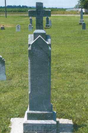 CLUNE, MARIA ANNA - Mercer County, Ohio | MARIA ANNA CLUNE - Ohio Gravestone Photos