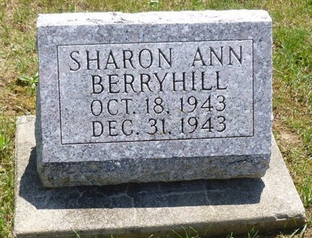 BERRYHILL, SHARON ANN - Miami County, Ohio | SHARON ANN BERRYHILL - Ohio Gravestone Photos