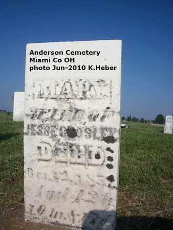 CROLSEY, MARY - Miami County, Ohio   MARY CROLSEY - Ohio Gravestone Photos