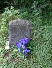 CLINE, UNKNOWN - Monroe County, Ohio   UNKNOWN CLINE - Ohio Gravestone Photos