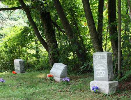 CRONIN, ALEXANDER - Monroe County, Ohio   ALEXANDER CRONIN - Ohio Gravestone Photos