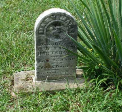 HARTSHORN, MARY JANE - Monroe County, Ohio   MARY JANE HARTSHORN - Ohio Gravestone Photos