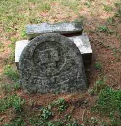 NALLY, LEVI - Monroe County, Ohio   LEVI NALLY - Ohio Gravestone Photos