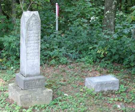 SLOAN, CHARLOTTE A. - Monroe County, Ohio   CHARLOTTE A. SLOAN - Ohio Gravestone Photos