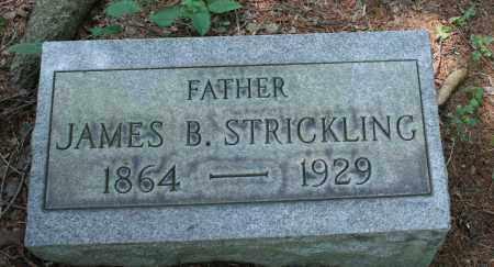 STRICKLING, JAMES WINLAND BENTON - Monroe County, Ohio | JAMES WINLAND BENTON STRICKLING - Ohio Gravestone Photos