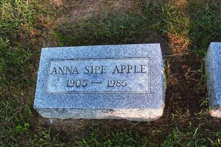 APPLE, ANNA - Montgomery County, Ohio   ANNA APPLE - Ohio Gravestone Photos