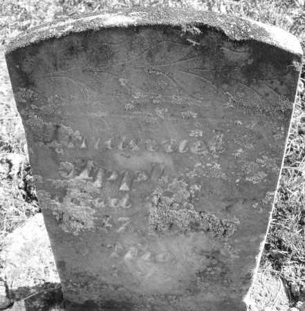 APPLE, AMANUEL - Montgomery County, Ohio   AMANUEL APPLE - Ohio Gravestone Photos