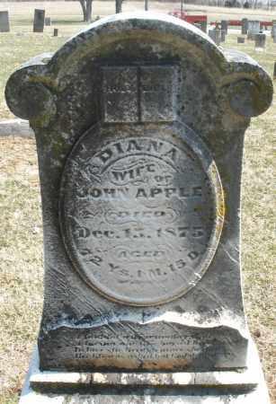 APPLE, DIANA - Montgomery County, Ohio | DIANA APPLE - Ohio Gravestone Photos