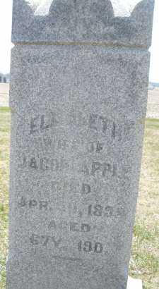 APPLE, ELIZABETH - Montgomery County, Ohio   ELIZABETH APPLE - Ohio Gravestone Photos
