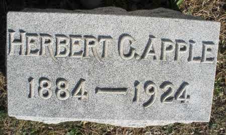 APPLE, HERBERT - Montgomery County, Ohio   HERBERT APPLE - Ohio Gravestone Photos