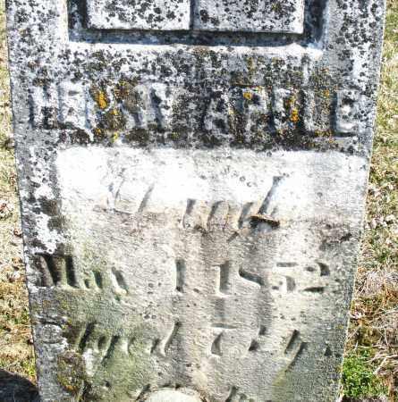 APPLE, HENRY - Montgomery County, Ohio | HENRY APPLE - Ohio Gravestone Photos
