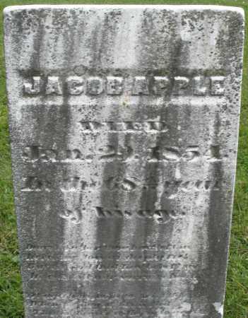 APPLE, JACOB - Montgomery County, Ohio | JACOB APPLE - Ohio Gravestone Photos