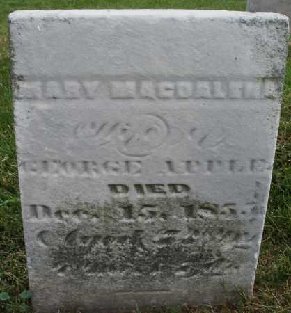 APPLE, MARY MAGDALENA - Montgomery County, Ohio   MARY MAGDALENA APPLE - Ohio Gravestone Photos