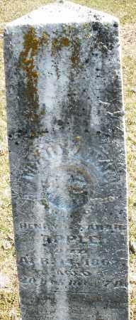 APPLE, MARY ANN - Montgomery County, Ohio   MARY ANN APPLE - Ohio Gravestone Photos